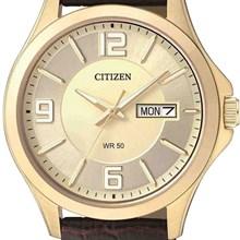 Relógio Citizen Classic Masculino Dourado Marrom BF2003-09P